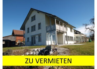6.5-Zi-Einfamilienhaus in Oetwil a. See